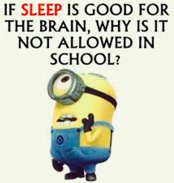 38 Great Funny Minion Quotes Funny images Funny Memes minions funny quotes funny text messages