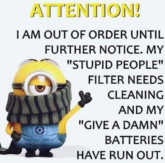 38 Great Funny Minion Quotes Funny images Funny Memes 21