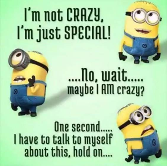 38 Great Funny Minion Quotes Funny images Funny Memes 22