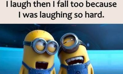 38 Great Funny Minion Quotes Funny images Funny Memes 30
