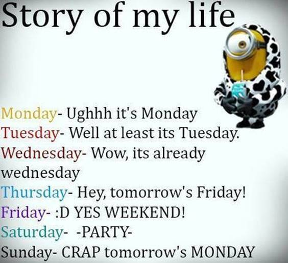38 Great Funny Minion Quotes Funny images Funny Memes 4