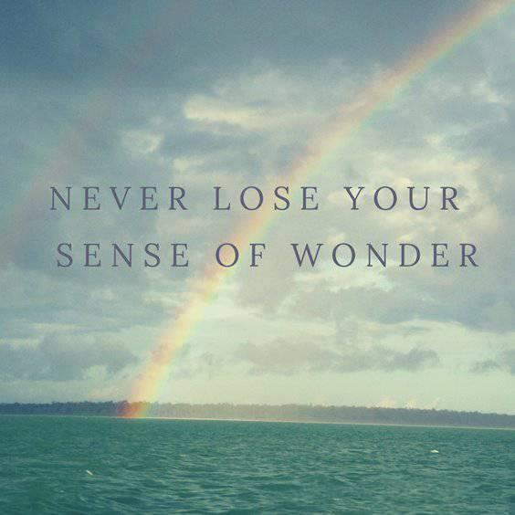 38 Short Motivational Quotes About Life Success 18