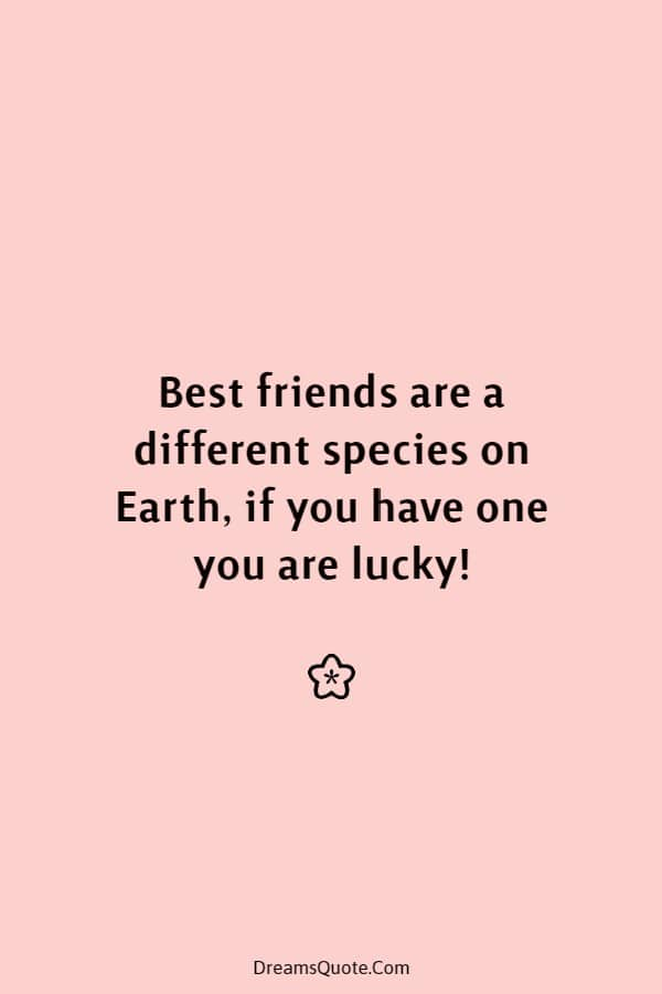 40 Cute Best Friend Quotes Friendship Thoughts | friendship, best friends quotes, quotes about friendships