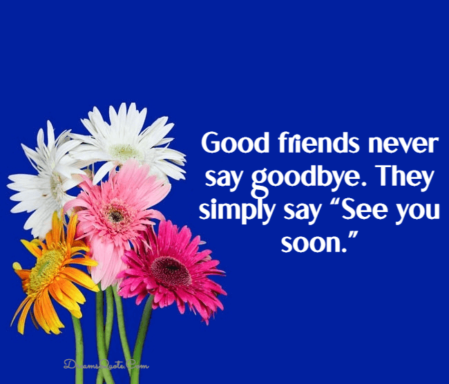 farewell and goodbye quotes for friends