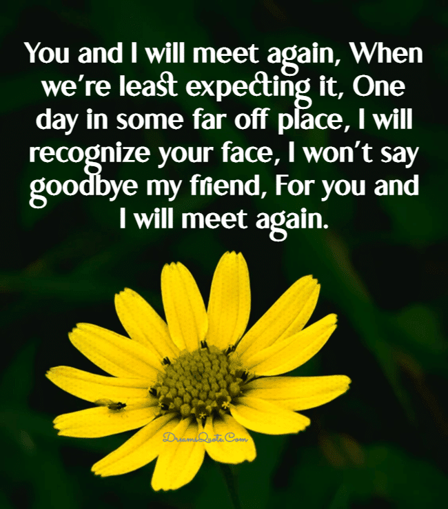 goodbye quotes for friends