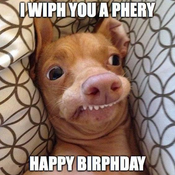 Happy Birthday Guy Funny