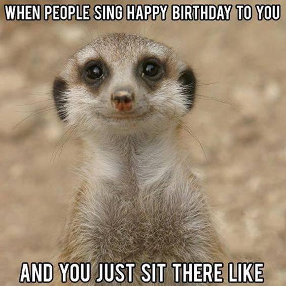 Happy Birthday Hilarious