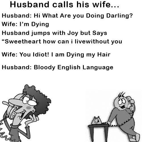 """I Love My Wife Meme - Husband calls his wife... Husband: Hi What Are you Doing Darling? Wife: I'm Dying Husband jumps with Joy but Says """"Sweetheart how can i live without you Wife: You Idiot! I am Dying my Hair. Husband: Bloody English Language."""