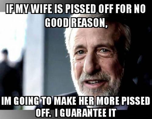 45 Wife Memes That Perfectly Sum Up Married Your how to train your woman meme - If your wife has, she requires I'm completely clueless as to why my wife is so angry right now. I am going to make her even more furious off. I promise you it will work.