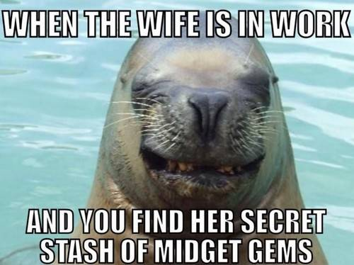 45 Wife Memes That Perfectly Sum Up Married Your good husband meme - When my wife is at work and you discover her collection of little jewels, it is just so funny.