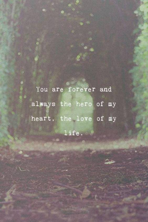 Love You Till The End Of My Life Quotes