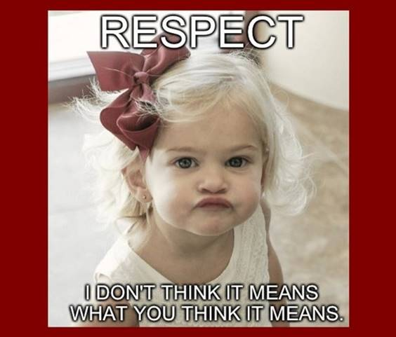 Respect is imbued from the time an infant grows into a child. If your child does not respect you, then it is your own fault. Society is not to blame. This has nothing to do with video games or TV, but is an honest representation of life. Respect Meme