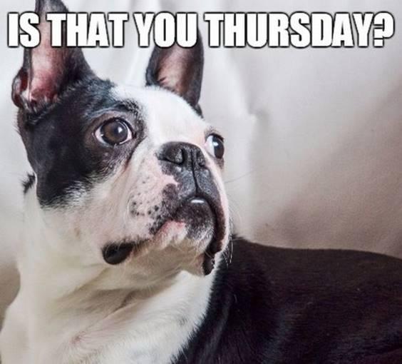 funny thursday memes