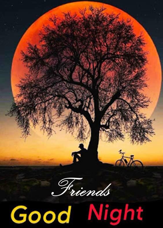 goodnight special friend