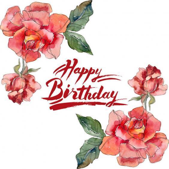 same day birthday wishes