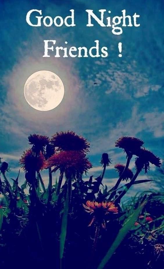sweet dreams friend