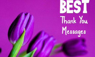 Thank You Messages Wishes And Quotes Appreciation Quotes about Thank You Notes Ever Written