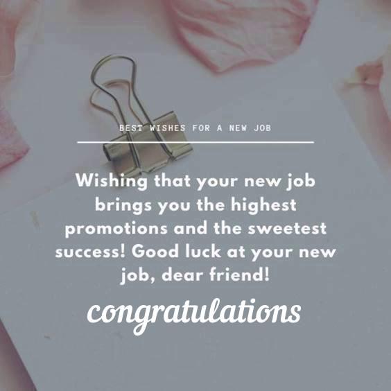 congratulations cards for new job