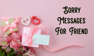 Sorry Messages for Friends Notes Quotes About Apology