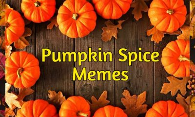 Pumpkin Spice Memes Images And Quotes